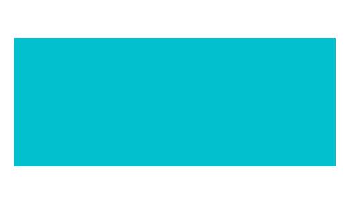 WooSignal Blue Logo